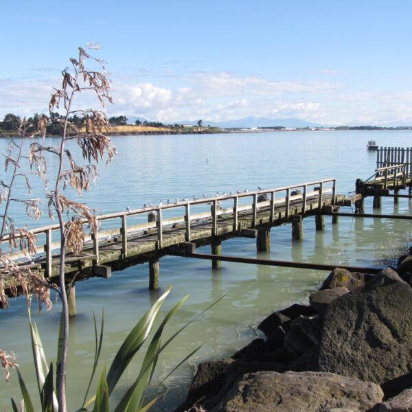 Timaru Caroline Bay
