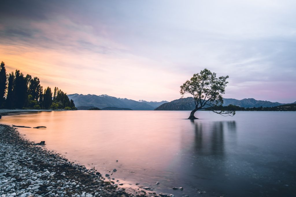 Breathe Right and Reduce Your Stress Workshop: Wanaka